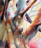 chrises-trees-angelshaug03